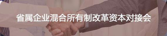省属企业混合所有制改革资本对接会.png